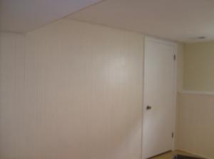 basement in progress